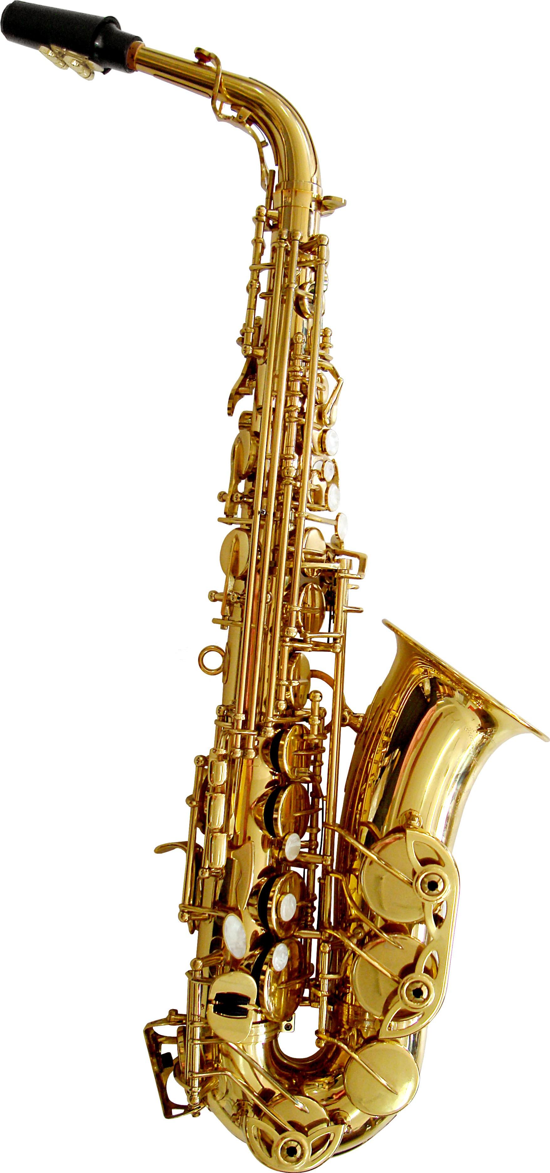 Rosetti Series 5 Alto Saxophone Outfit - Lacquer