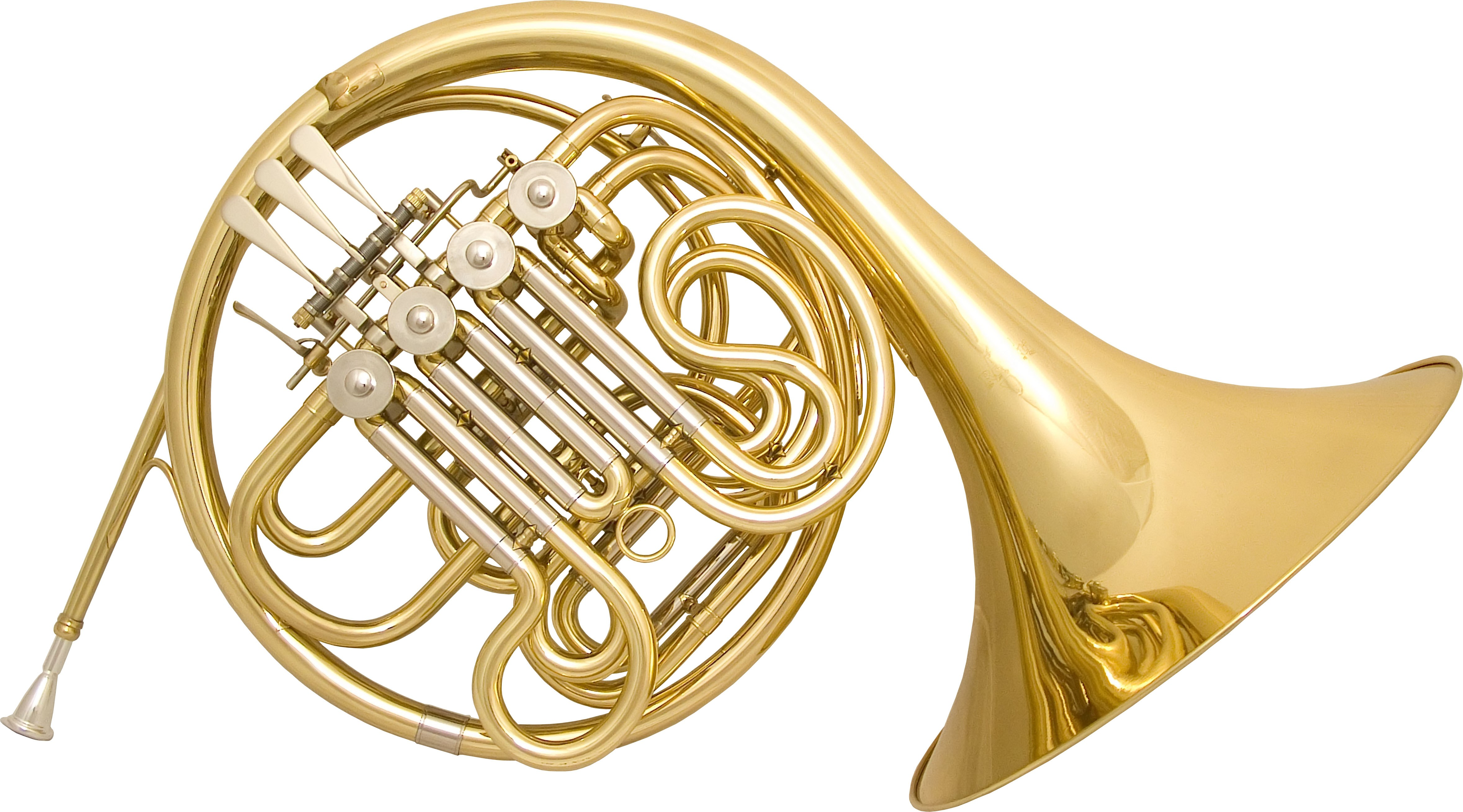 Rosetti Series 5 Bb/F Double French Horn Outfit - Lacquer