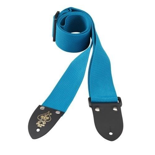 D'Andrea 2 Inch ACE Polyweb Guitar Strap - Teal