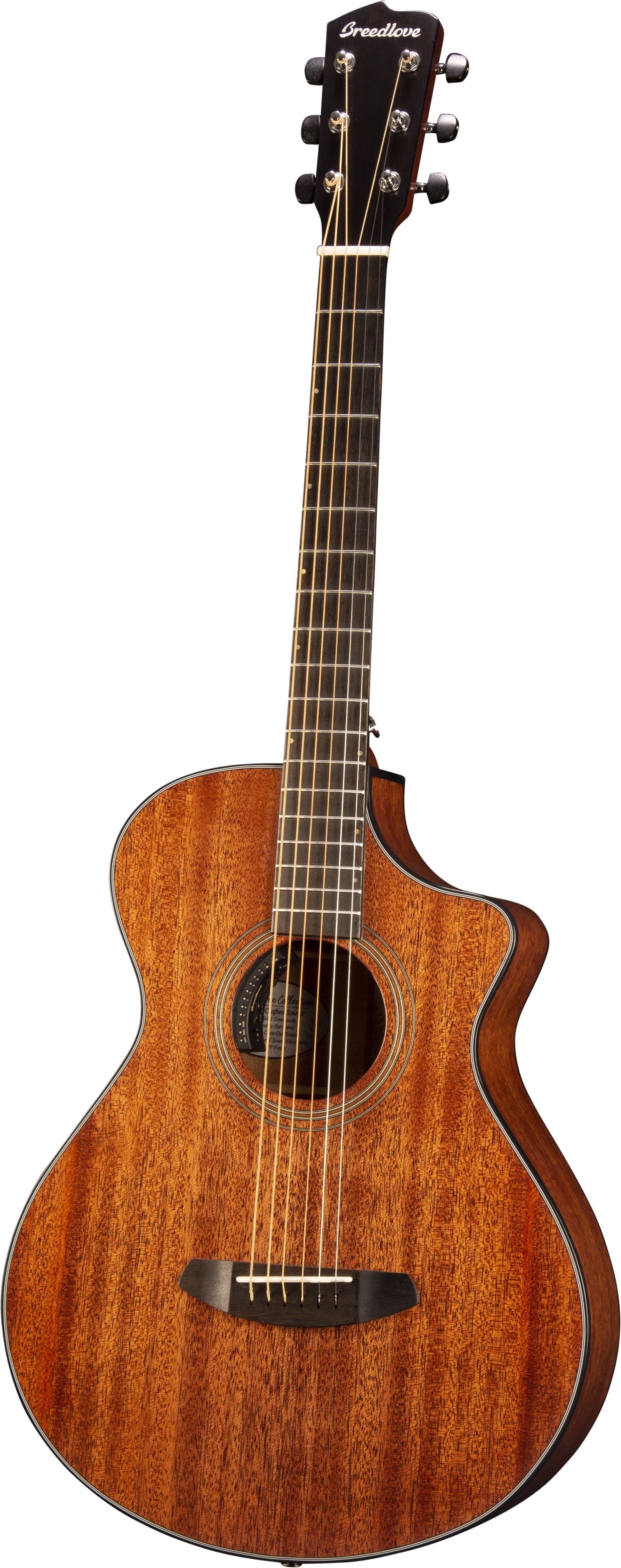 Breedlove Organic Series Wildwood Concertina Satin CE