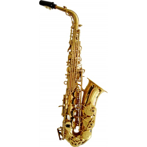 Rosetti Series 5 Alto Saxophone Outfit - Lacquer