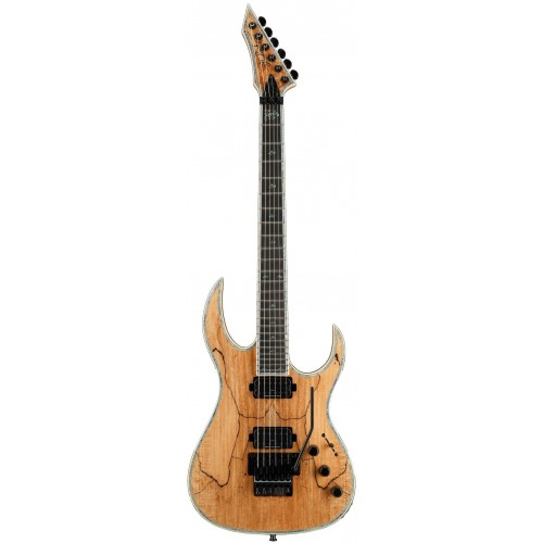 B.C. Rich Shredzilla Prophecy Exotic Archtop with Floyd Rose - Spalted Maple