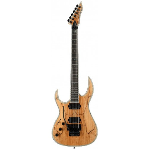 B.C. Rich Shredzilla Prophecy Archtop with Floyd Rose Left Hand - Spalted Maple